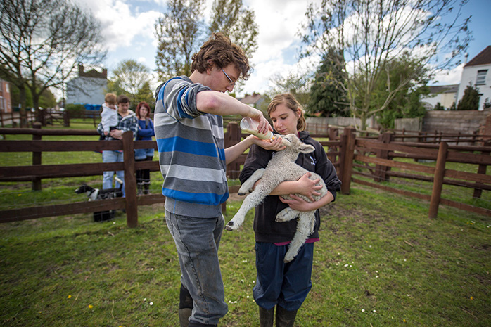 A young man and girl feeding a lamb